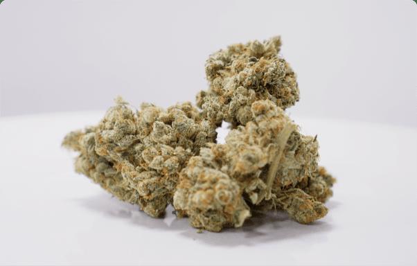 Lift & Co  | Cannabis Reviews, Rewards, Events & More - Lift