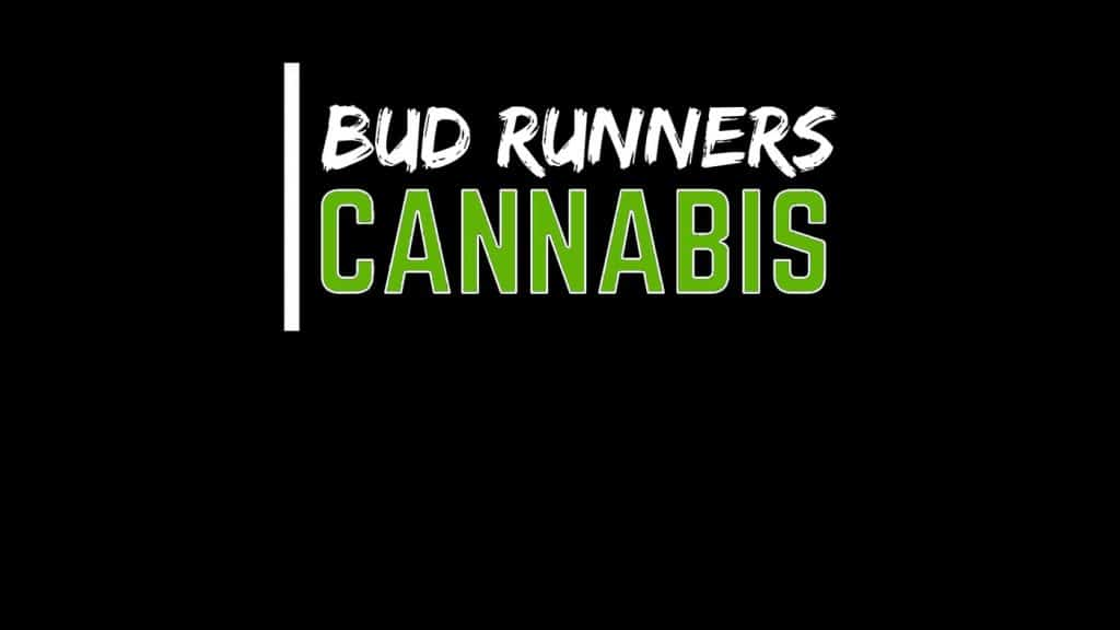 Bud Runners Cannabis - 9610 100 Street | Store