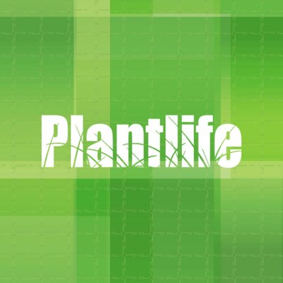 Plantlife - 101-4215 80 Avenue | Store