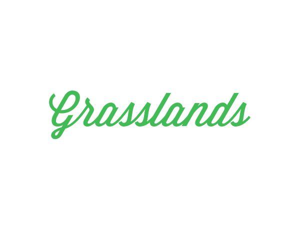 Grasslands | Brand