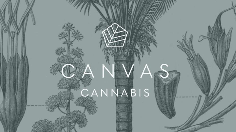 Canvas Retail   Store